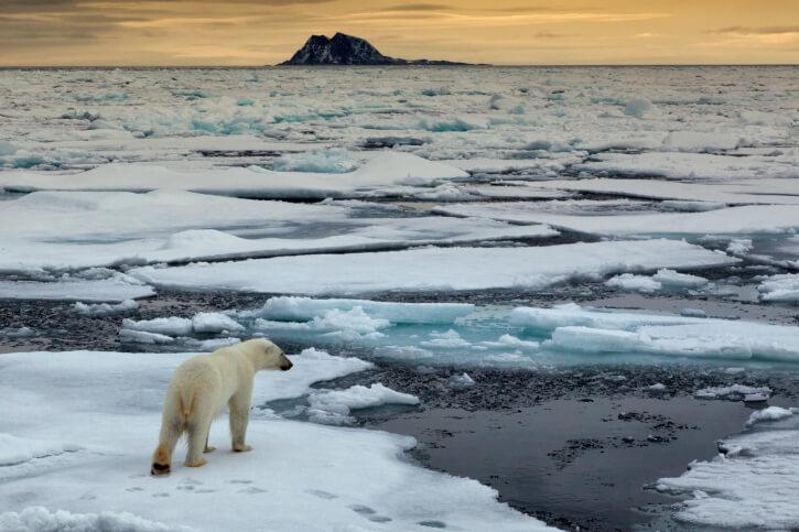 Els impactes del canvi climàtic ja són visibles a tots els continents
