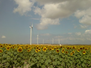Bandirma-3 Wind Power Project
